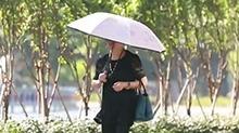 什么样的防护伞能保证不被晒黑?