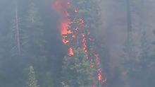 加州山火:至少两人死亡 火势已得到控制