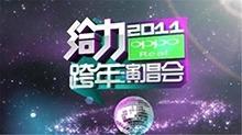 2010-2011湖南卫视跨年演唱会
