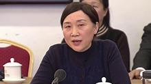 李微微参加特邀58组分组讨论:搭建政协云平台 汇合委员智慧力量