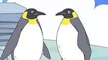 "<B>小新</B>喂食企鹅的""初体验"""