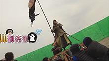 【热剧幕后纪录】《楚乔传》花絮:元淳原声演技MAX 楚乔嘶吼杀敌超燃