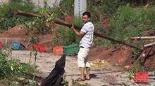 衡阳县遭遇龙卷风袭击