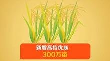 2017年湖南新增300万亩高档优质稻