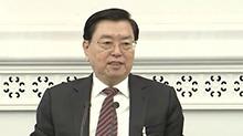 张德江参加宁夏代表团审议