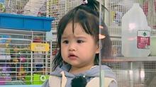 第8期:饺子迎新伙伴变小家长