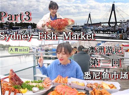 【大胃王mini】为食出发:大胃mini澳洲海鲜市场捉妖记,今日午餐螃蟹怪龙虾精