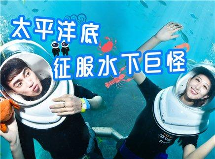 【环球梦游记】澳大利亚篇:太平洋底触摸水下巨怪海报