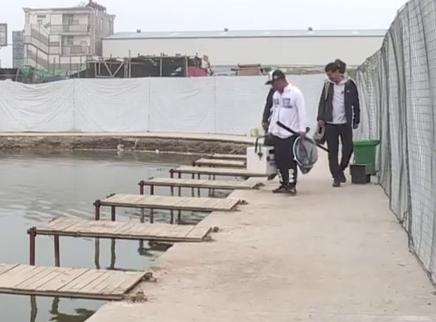 正钓抢鱼巧用饵