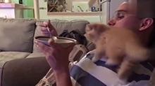 想和主人吃一碗冰淇淋的喵